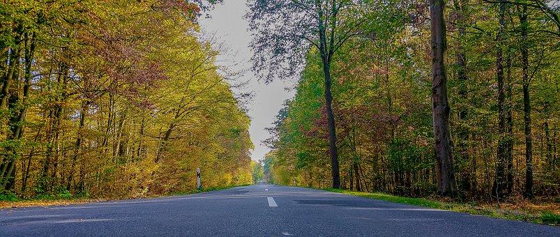 Road, Away, Highway, Autumn, Asphalt, Sky, Avenue