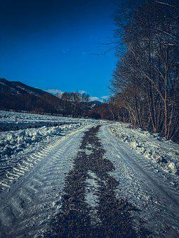 Trees, Road, Pathway, Snow, Winter, Mountains, Frost
