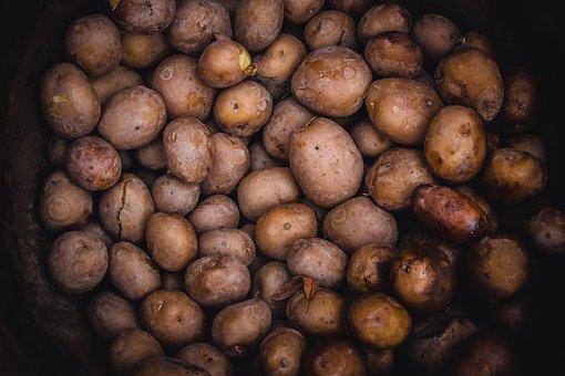 Boiled Potato, Boiled, Potato, Potatoes, Vegetables