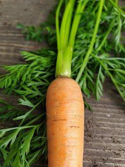 Carrot, Vegetable, Harvest, Produce, Root Vegetable