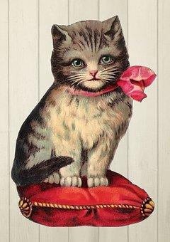 Vintage, Kitten, Cat, Pillow, Bow, Royal, Cute, Sweet