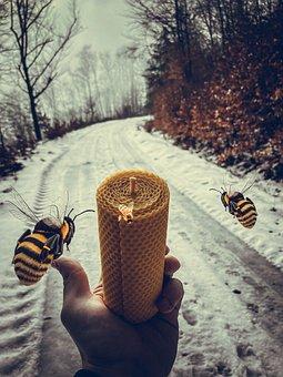 Bees, Candle, Honey, Copper, Beekeeper, Bee-keeping