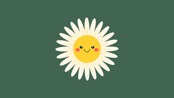 Daisy, Flower, Smiley, Smile, Happy, Cute, Bloom