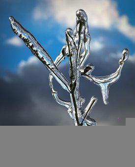 Ice, Icicle, Branch, Twig, Blue, Himmel, Cloud, Cold