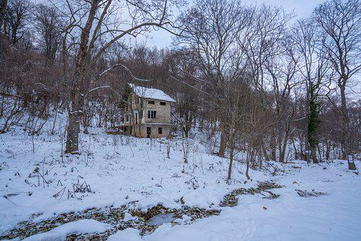 House, Chalet, Snow, Winter, Picture, Forest, Nature