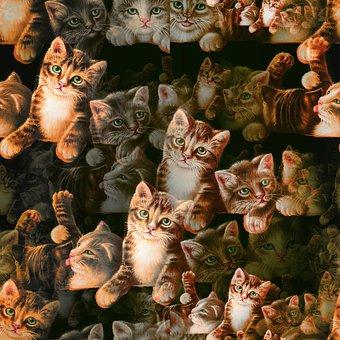 Kitten, Seamless Pattern, Background, Cat, Animal, Pet