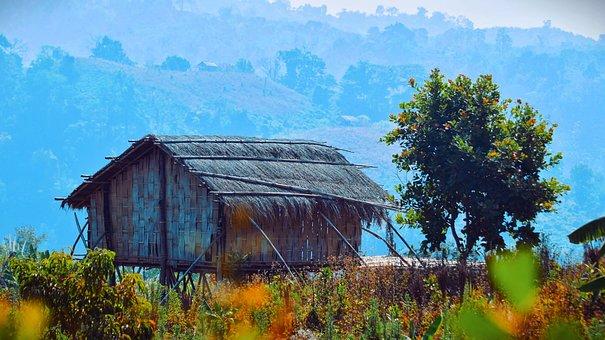 Fram, House, Tree, Landscape, Natural, Beautiful, Asia
