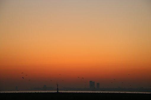 Sunset, Sea, City, Silhouette, Orange Sky, Coast, Dusk
