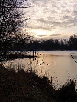 Sea, River, Water, Morning, Sunlight