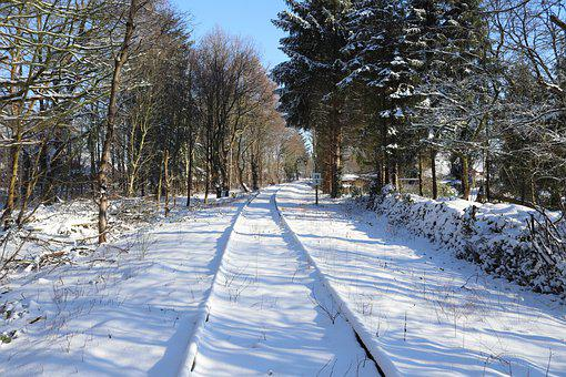 Railway, Trees, Snow, Winter, Wintry, Cold, Forest