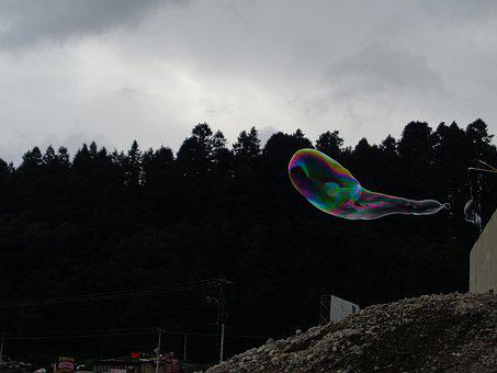 Bubble, Color, Forest, Rain, Clouds, Colorful, Float