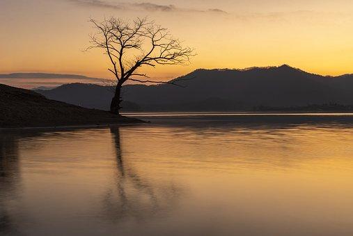 Lake, Tree, Mountains, Silhouettes, Tree Silhouette