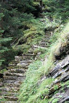 Nature, Obverse, Switzerland, Graubünden, Alpine