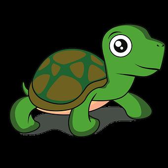 Turtle, Animal, Cartoon, Tortoise, Reptile, Wildlife