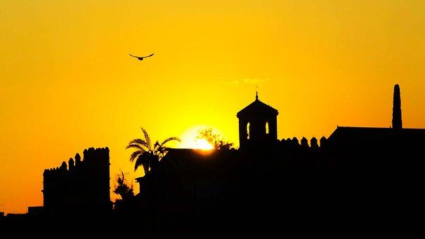 Sunset, Cordoba, Spain, Bird, Paisaje, Silhouette, Sun
