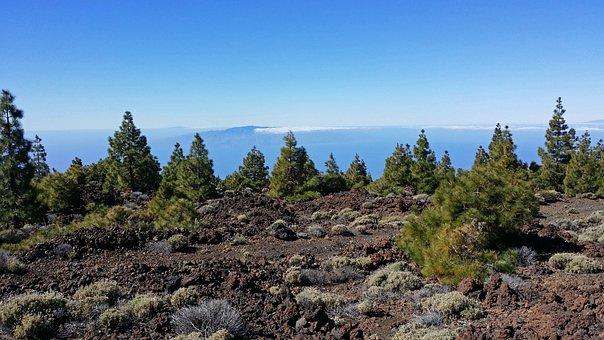 Tenerife, Canary Islands, National Park, Lava Rock