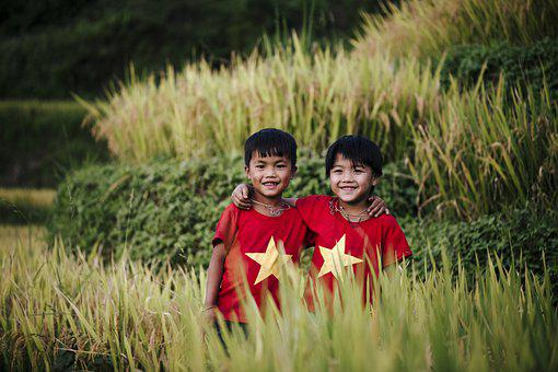 Children, Boys, Vietnamese, Grasses, Meadow