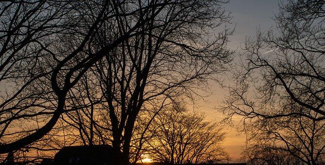 Sun, Doom, Sunset, Air, Colors, Park, Trees