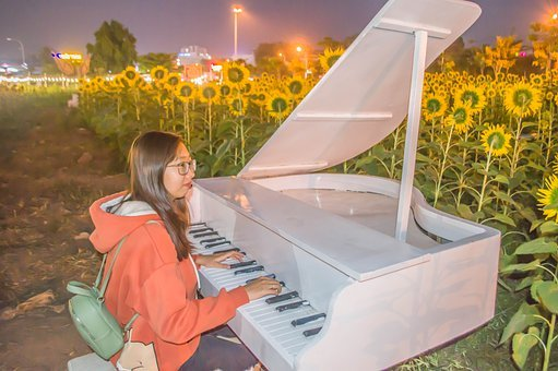 Flower, Piano, Girl, Asia, Drawing