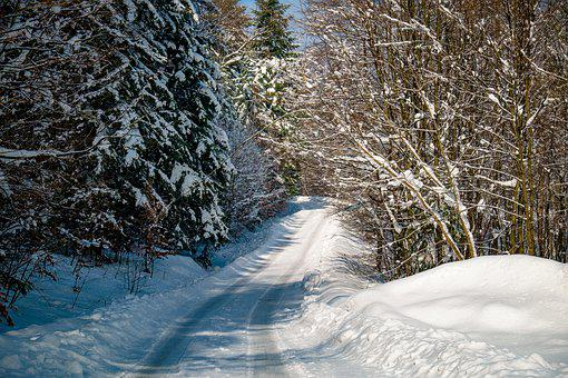 Winter, Forest, Way, Snow, Landscape, Tree, Snowy, Ate