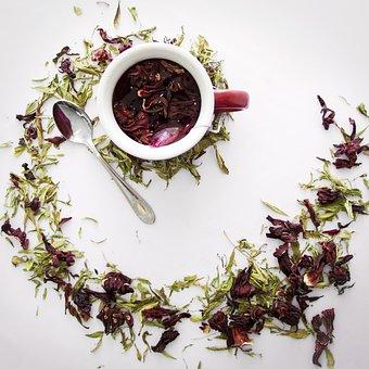 Tea, Jamaica, Leaves, Hibiscus, Plant, Flower, Exotic