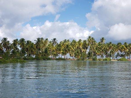 Alagoas, Mar, Northeast, Beach, Brazil, Summer, Travel