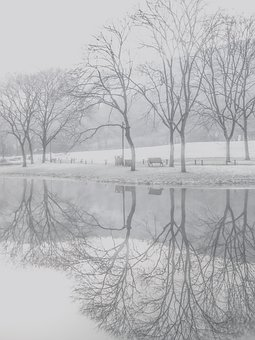 Snow, Dream, Park, Winter, Reflection, The Scenery