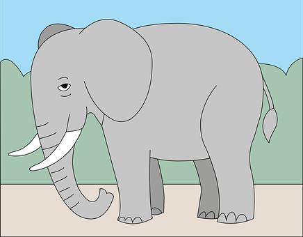 Elephant, Mammal, Wild Animals, Animals