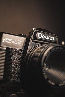 Camera, Photography, Lens, Photographer, Focus, Canon