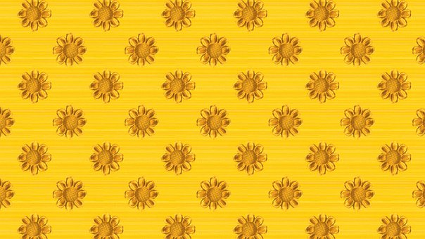 Yellow, Flowers, Floral, Sunflowers