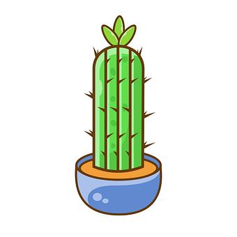 Cactus, Plant, Green, Pot, Potted Plant