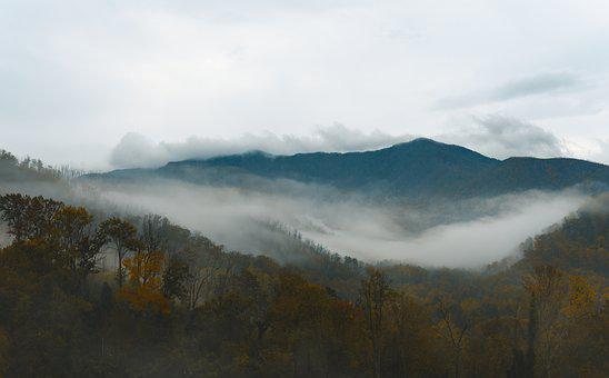 Mountains, Fog, Trees, Forest, Woods, Woodlands, Mist
