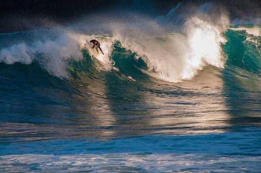 Tenerife, Surfer, Sea, Beach, Water, Sand, Wave, Ocean