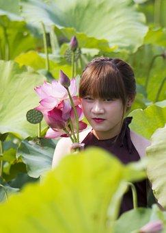 Lotus, Girl, National Costume, Picking Flowers