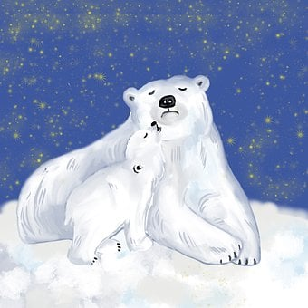 Polar Bear, Glacier, Snow, Cold, Protection, Animals