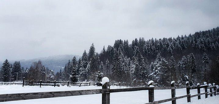 Frost, Landscape, Nature, Winter, Cloud, Cold, Snow