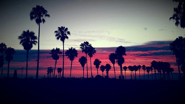 Venice Beach, Venice, Venice Ca, Sunset, Clouds, Sky