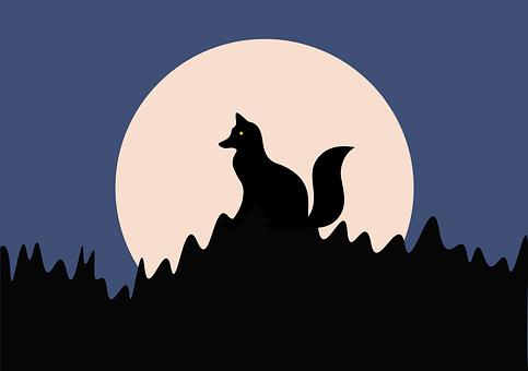Wolf, Full Moon, Night, Darkness, Mammal, Animal