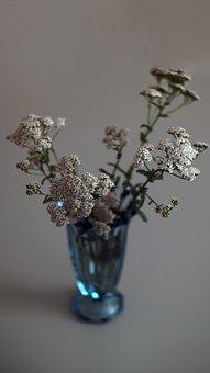 Wild Flowers, Vase, Bouquet, Decoration, Flower Vase