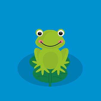 Frog, Toad, Water, Green Frog, Blue Water, Lily Pad