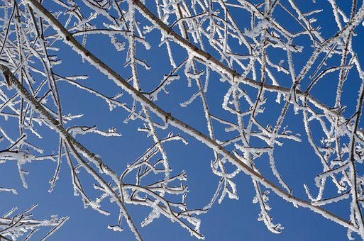 Aesthetic, Frost, Hoarfrost, Winter, Cold, Nature, Sky