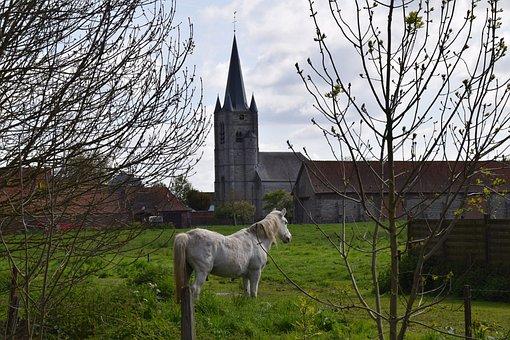Church, Landscape, Horse, Village