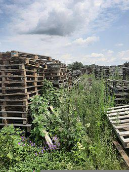 Pallets, Pallet, Wood, Logistics, Stacked, Stack, Diy