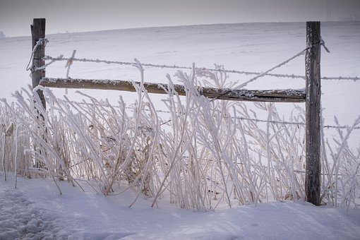 Fence, Snow, Frost, Winter, Nature, Cold, Landscape
