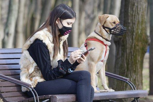 Girl, Dog, Masks, Pet, Owner, Bench
