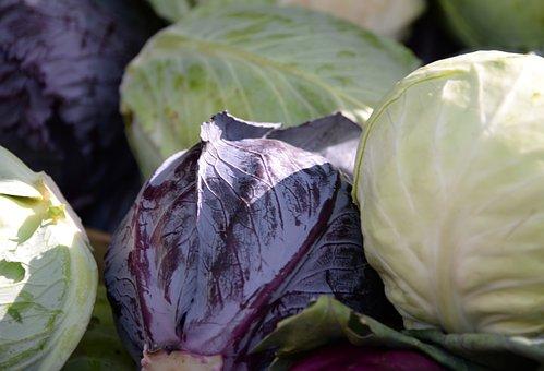 Vegetables, Market, Cabbage, Eat, Power, Violet, Green