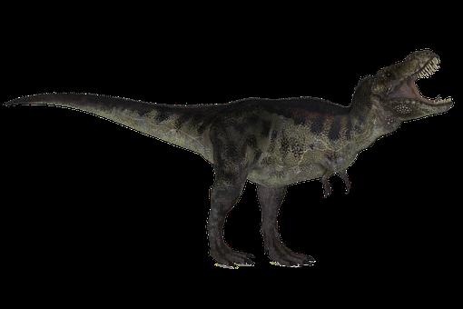 T-Rex, Dinosaur, Prehistoric