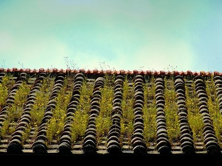 Roof, Tile, House, Roofing, Home, Construction