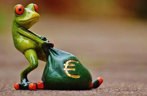 Frog, Money, Euro, Bag, Money Bag, Funny, Cute, Fun
