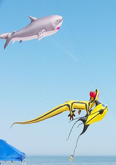 Objects, Seasons, Kites, Huge, Three, Flying, Contests